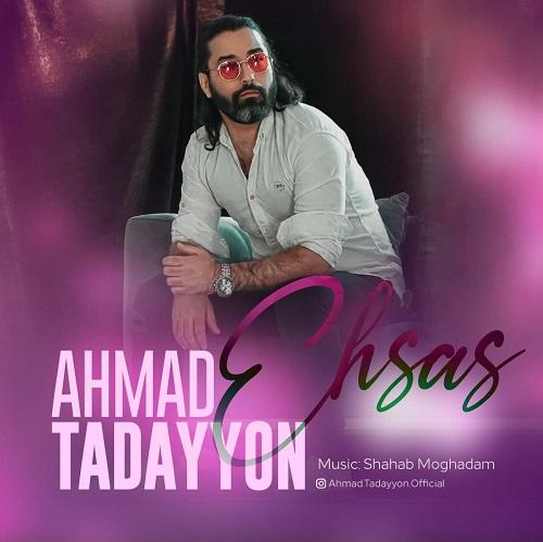 دانلود موزیک جدید احمد تدین احساس